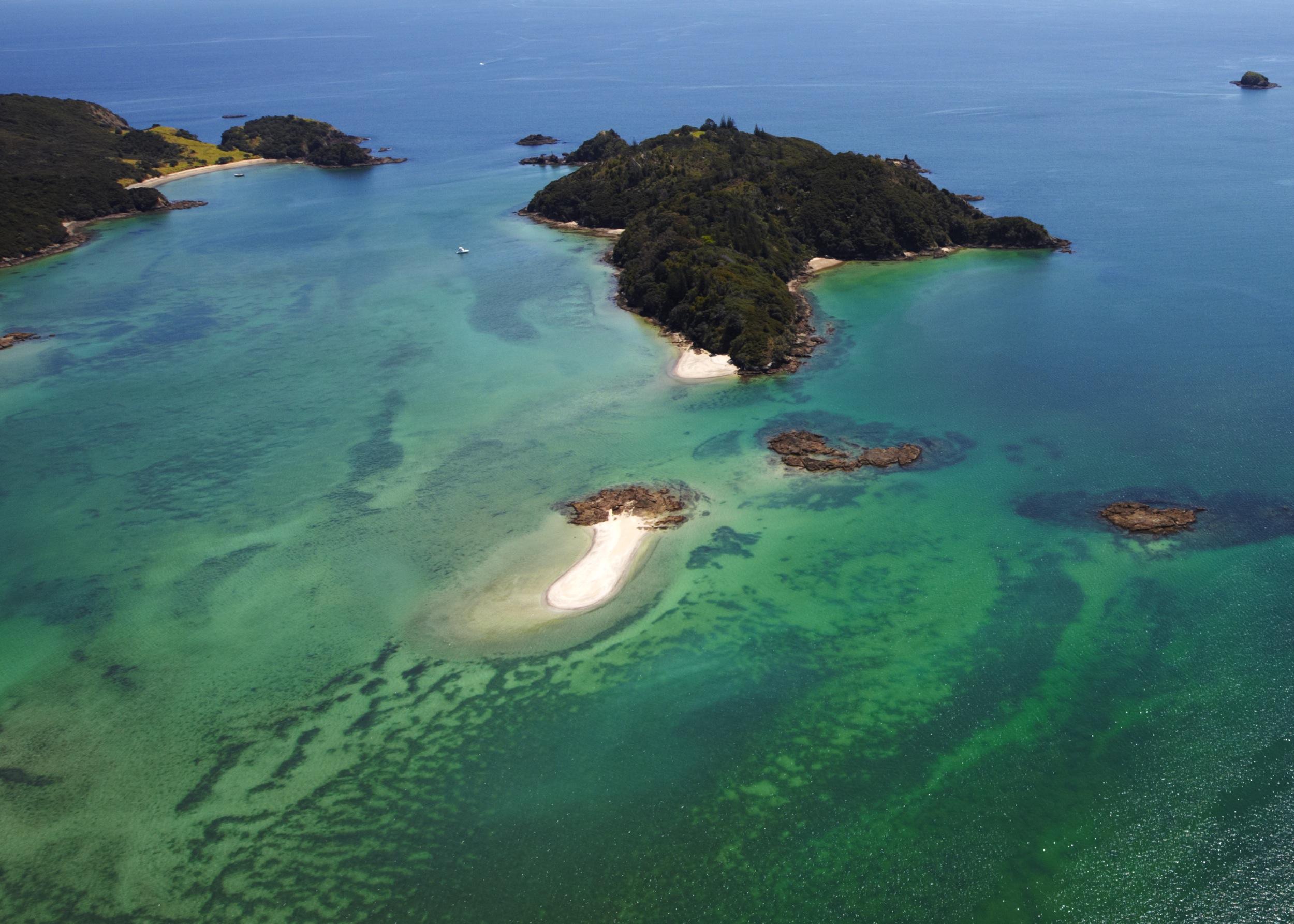 Motukiekie Island